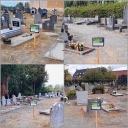Enherbement au cimetière de Bois-de-Lessines