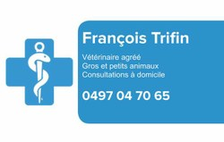 François Trifin