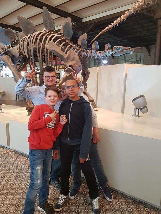 Visite du musée des Sciences naturelles et Balade à Bruxelles