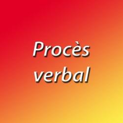 Conseil communal du 1er avril: procès verbal